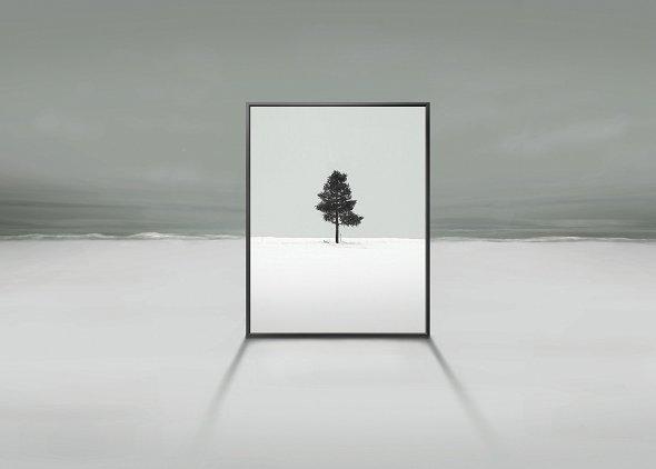 Samsung präsentiert neues Displaykonzept