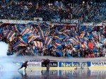 Folgeaufträge für Mermaid? - die schwedische Intersport AB sponsert den Verein Djurgården Hockey (Foto: Intersport AB/ Andreas Grandin )
