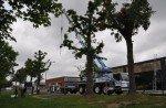 Bei der Installation kam ein großer Kranwagen zum Einsatz (Foto: ide-tec)