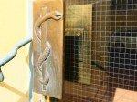 Äskulapstab auf der Tür einer unlängst geschlossenen Apotheke (Foto: TK/ invidis.de)