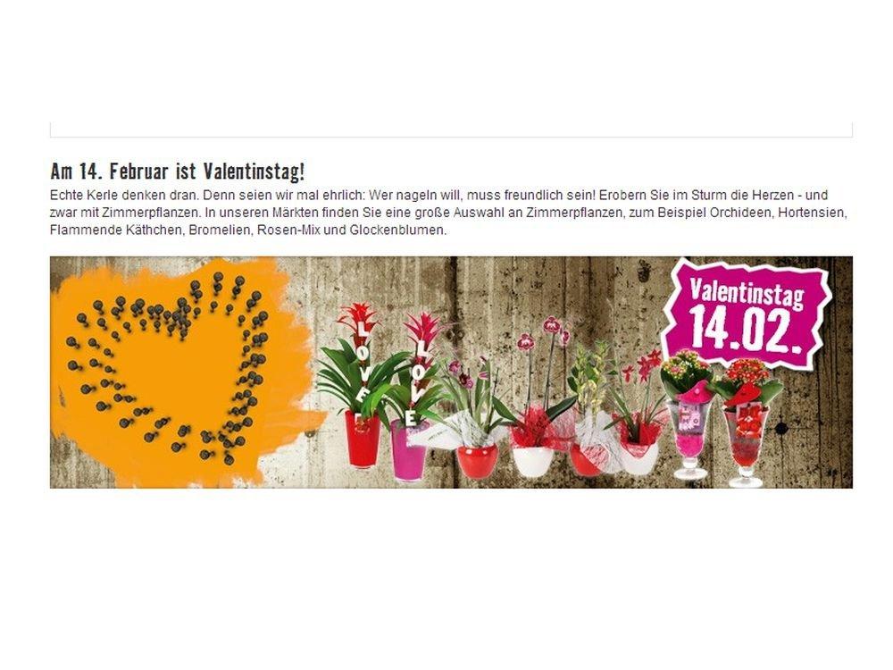 Stein des Anstoßes: valentinstags-Kampagne von Hornbach in DACH (Screenshot: invidis.de)