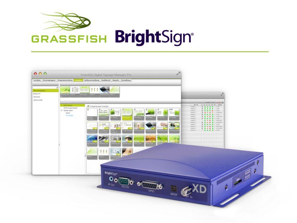 Grassfish und Brightsign kooperieren jetzt (Foto/ Grafik: Grassfish)
