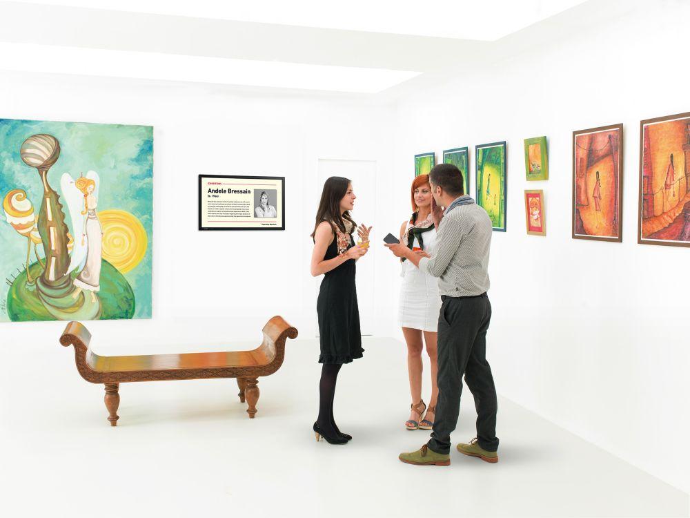 Ein PN-Y5-Display von Sharp in einer Kunstgalerie (Foto: Sharp)