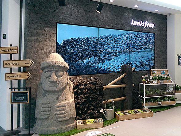 Innisfree: Pflanzen im Schaufenster - Video Wall im Eingangsbereich (Foto: Cayintech)