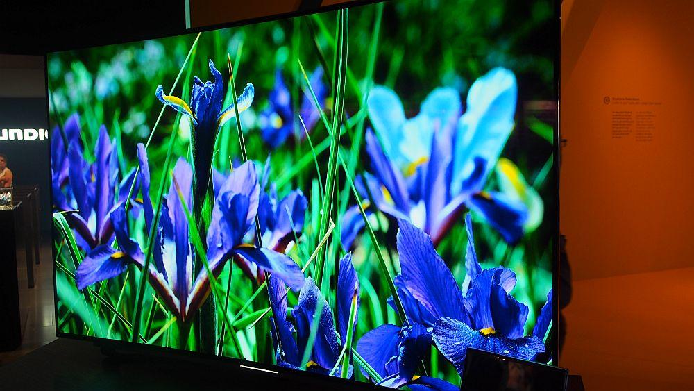 OLED-TV von Grundig (Foto: invidis.de)