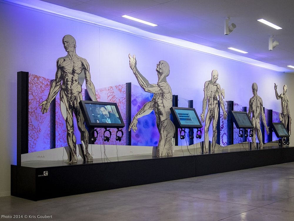 Andreas Vesalius-Ausstellung im belgischen Leuwen (Foto: Kris Goubert)