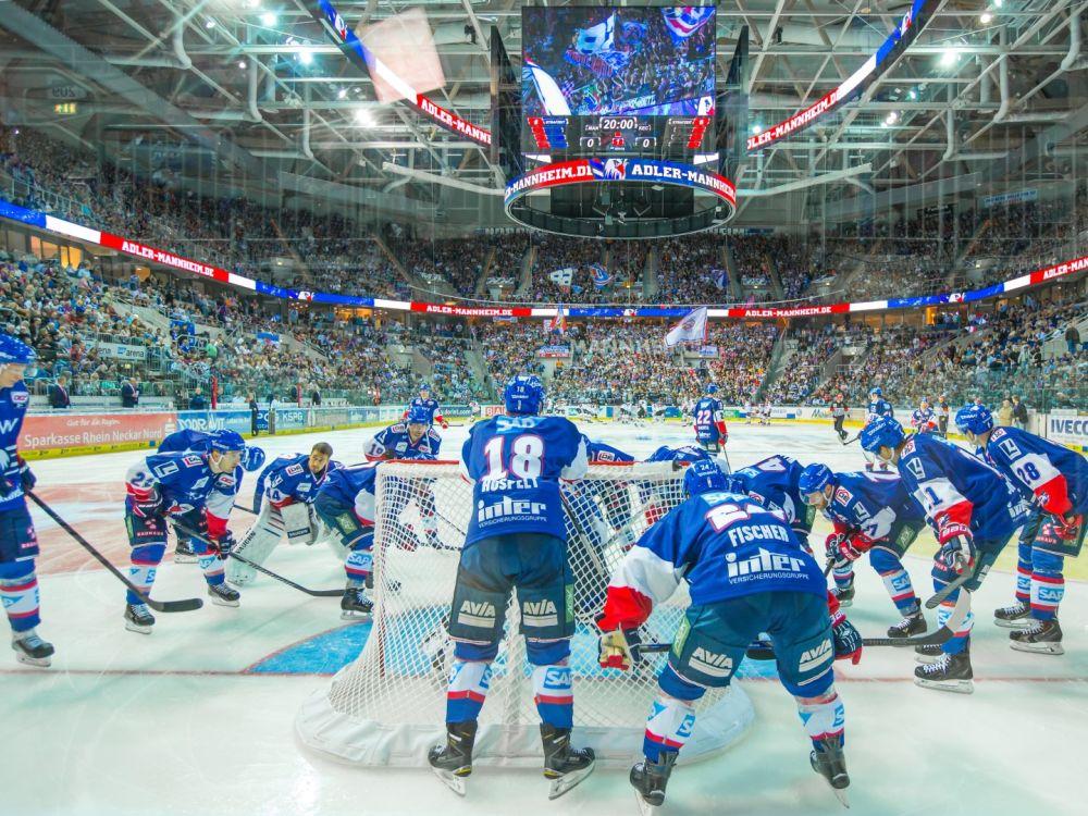 Adler vs. Haie. Eishockeyspiel in der SAP Arena (Foto: SAP Arena)