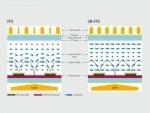 Herkömmliches Fringe-field switching-Materialien und UB-FFS (Grafik: SID)