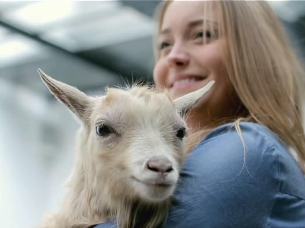 Shooting für die Raiffeisen-Kampagne - Ziege und Fotomodell (Screenshot: invidis)