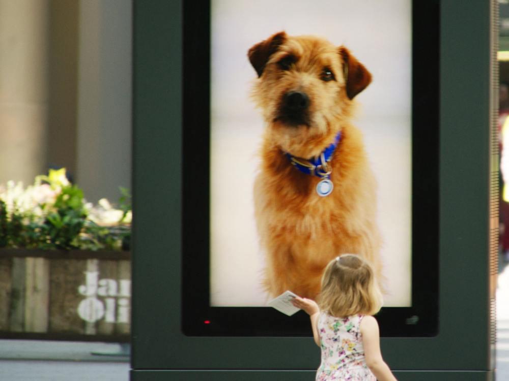 Tierisches Testimonial auf DooH-Screen (Foto: OgilvyOne)