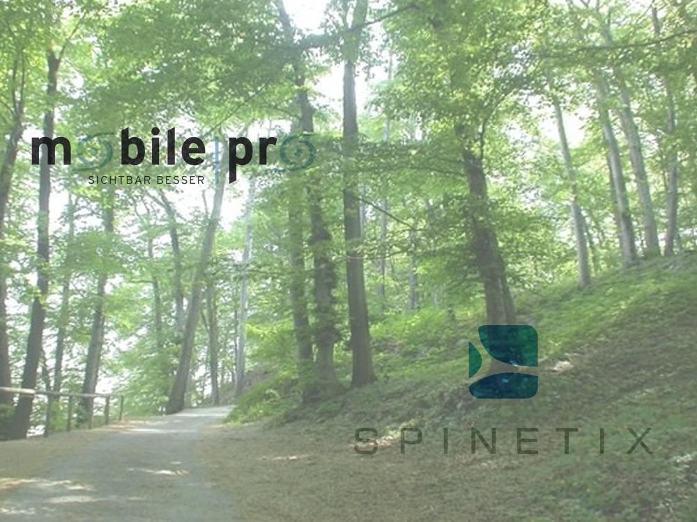 Gehen getrennte Wege: Spinetix und MobilePro (Foto: Stadtgemeinde Salzburg / J. Killer; Grafiken: Unternehmen; Montage: invidis)