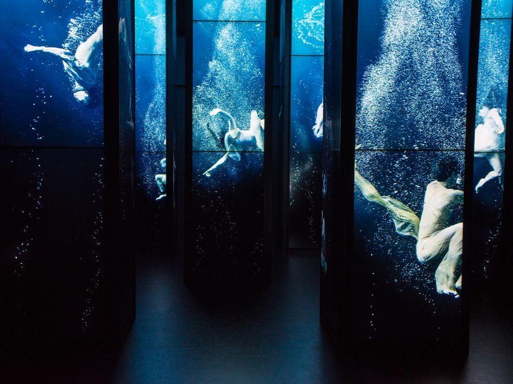 Keine Aquarien, sondern Sequenzen aus dem Installations-Video (Foto: Panasonic)