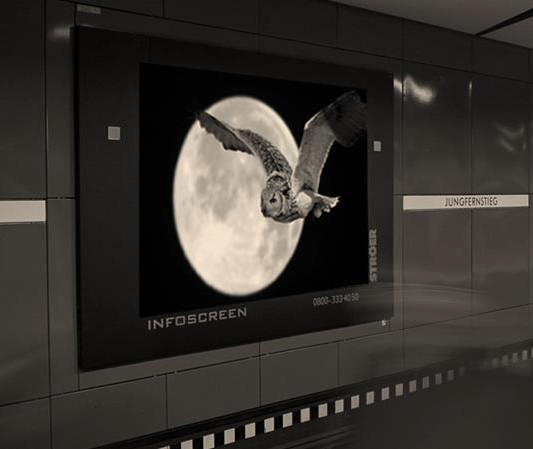 Infoscreen Nachtschwärmer (Foto: Ströer)