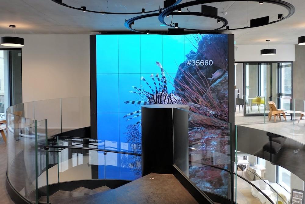 Microsoft Milano – mit 36 Screens werden die Besucher begrüßt (Foto: Ayno)