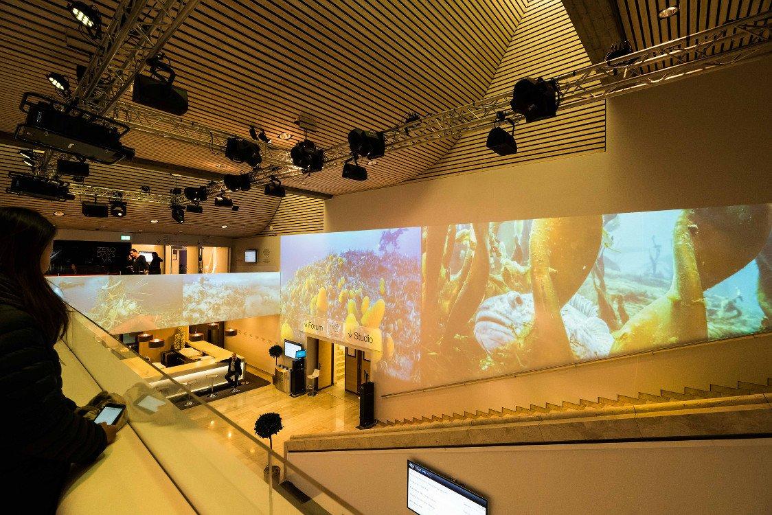 Projektion im Treppenaufgang (Foto: WEF)