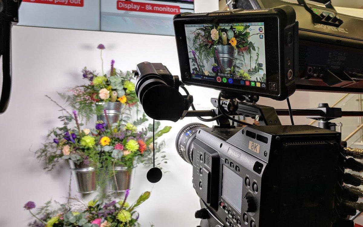 Sharp setzte bei der ISE auf Blumen (Foto: invidis)