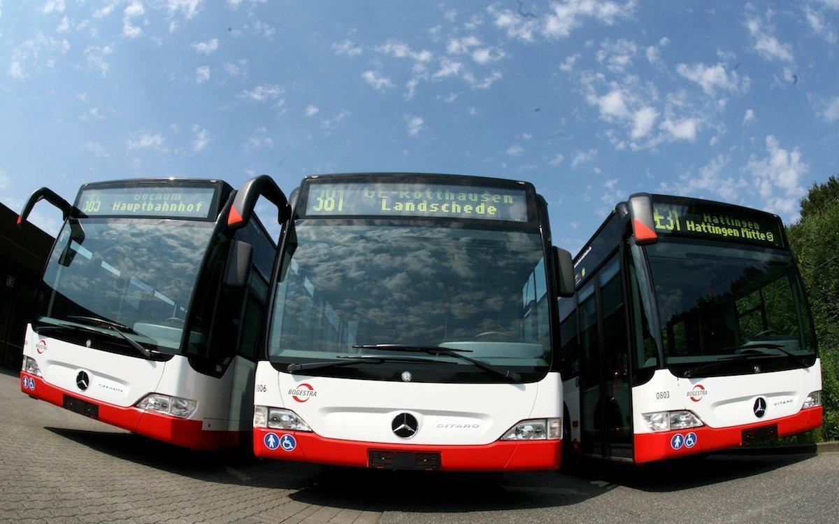 Busse der BOGESTRA – Symbolbild (Foto: BOGESTRA