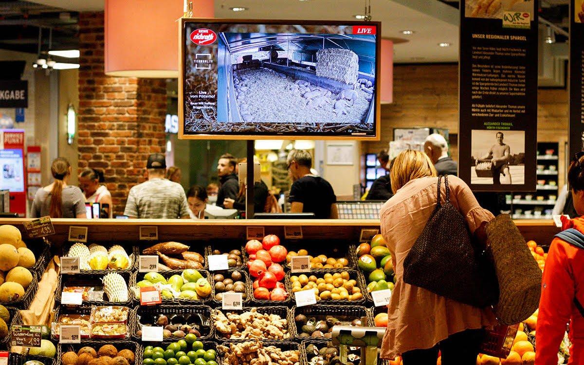 Anhand des Live Feeds aus dem Schweinestall kann sich jeder Konsument von den Argumenten für Slow Food und Regionalität überzeugen lassen (Foto: REWE Richrath)