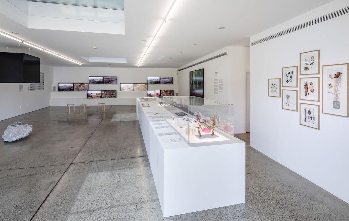 """Ausstellung """"Better Nature"""" mit 6 Arbeiten von Alexandra Daisy Ginsberg – im Hintergrund die Videoinstallation """"The Wilding of Mars"""" (Foto: Vitra Design Museum / Bettina Matthiesen)"""