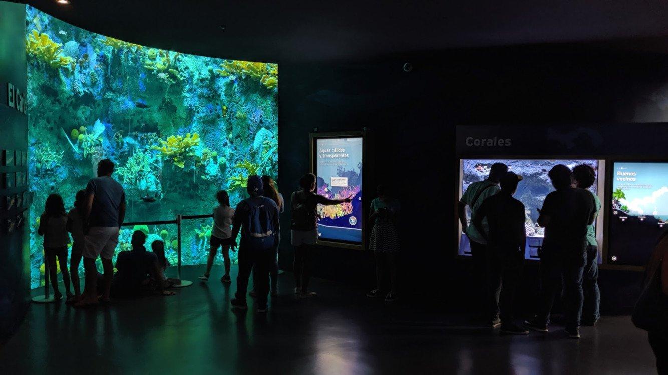 Biomuseo Panama (Foto: invidis)