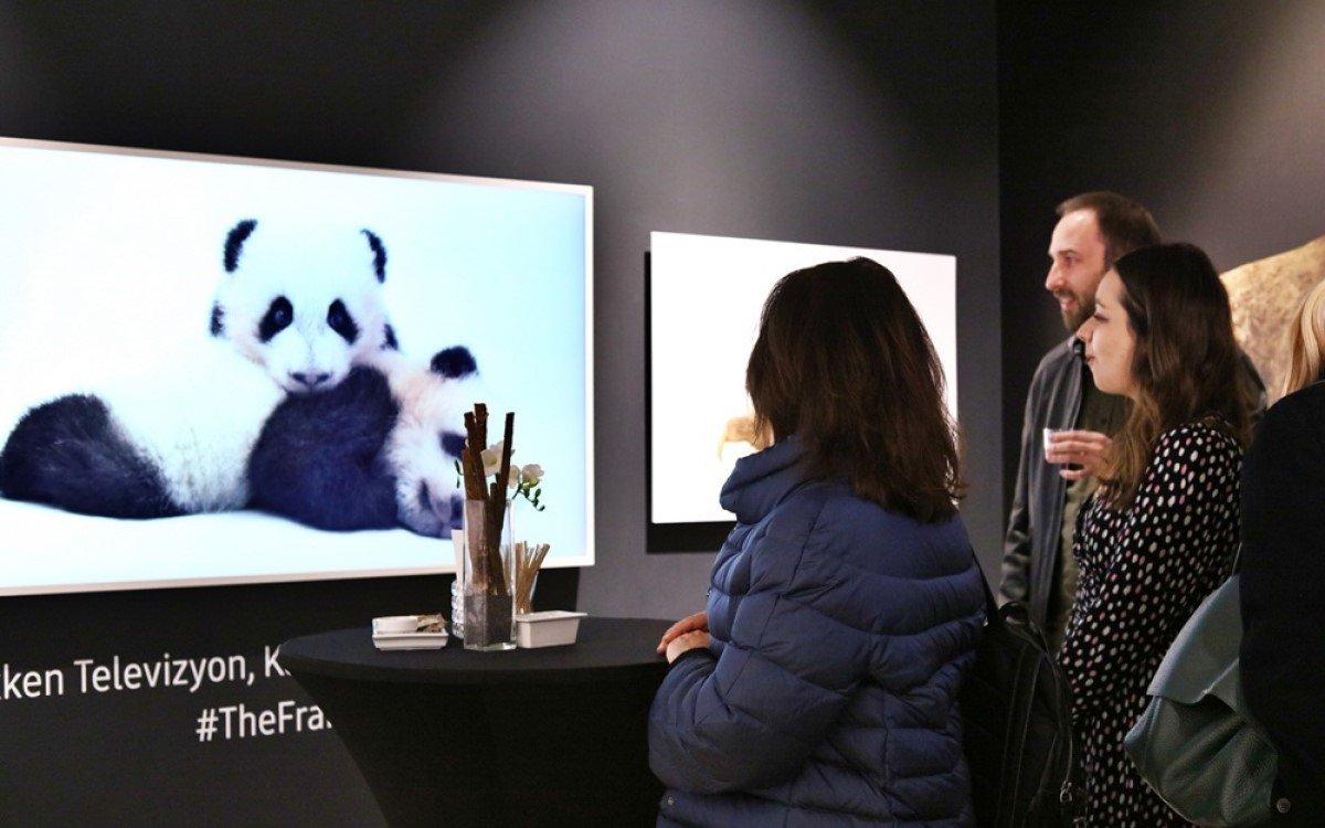 Die Fotos der National Geographic-Ausstellung in Istanbul werden zum Teil auf Samsung Lifestyle-TV The Serif und The Frame gezeigt (Foto: Samsung)