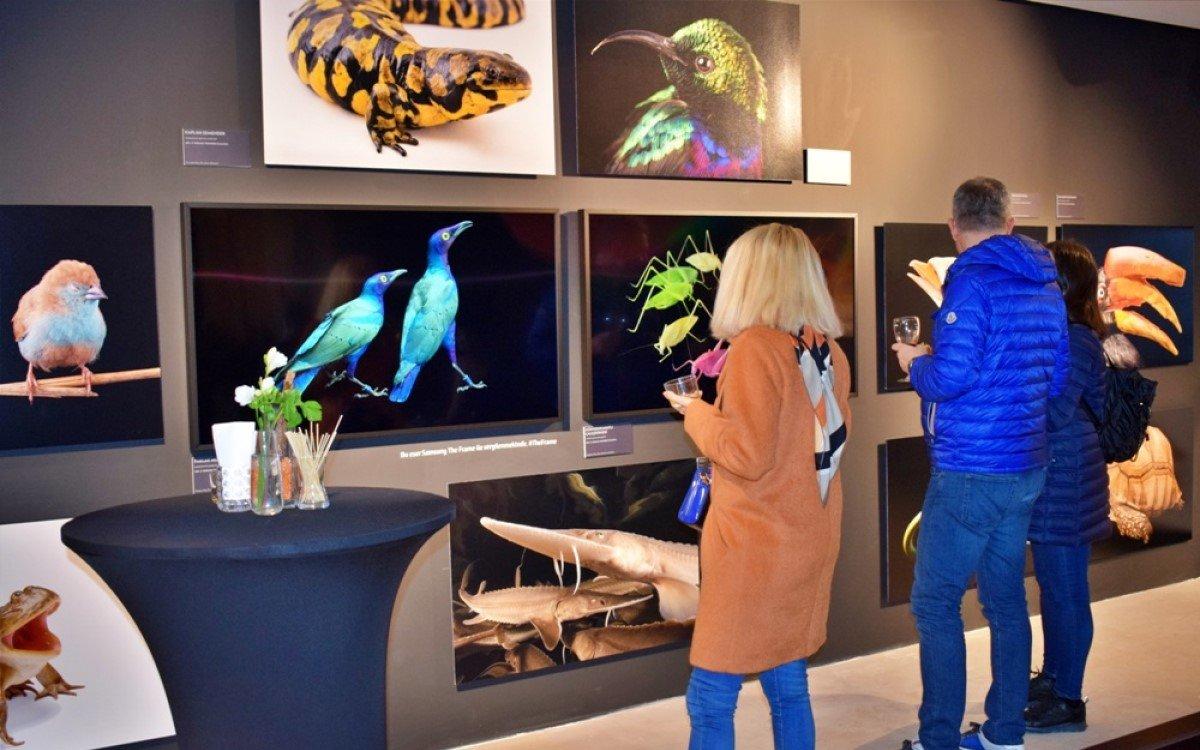 """Die Aufnahmen für die """"Endangered Animal Photography Exhibition"""" stammen vom amerikanischen Fotografen und Autoren Joel Sartore (Foto: Samsung)"""