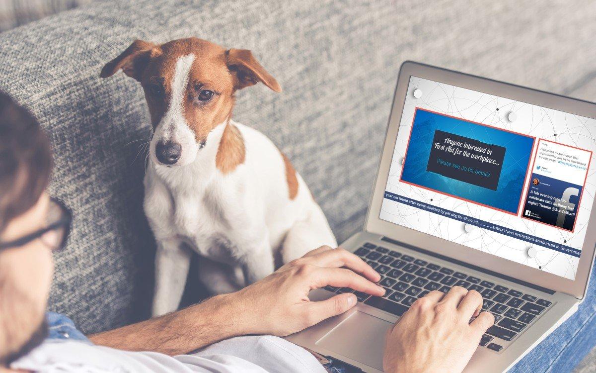 Mit dem Signagelive Broadcast Player lassen sich Mitarbeiter auch daheim mit Unternehmensinfos direkt versorgen (Foto: Signagelive)