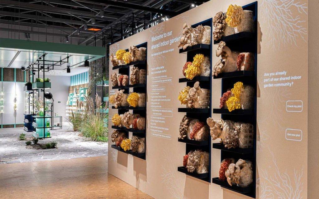 Mushroom Wall - Indoor Farming mit Style in Shared Spaces auf der Euroshop 2020 (Foto: Ansorg)