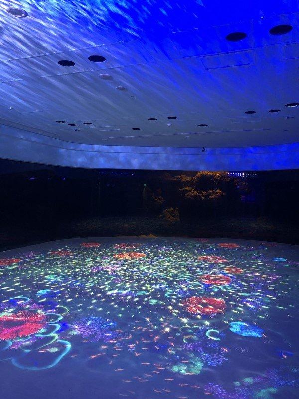 Immersive Unterwasserwelt im XPark Aquarium in Taiwan mit Projektionstechnologie von Christie (Foto: Christie)