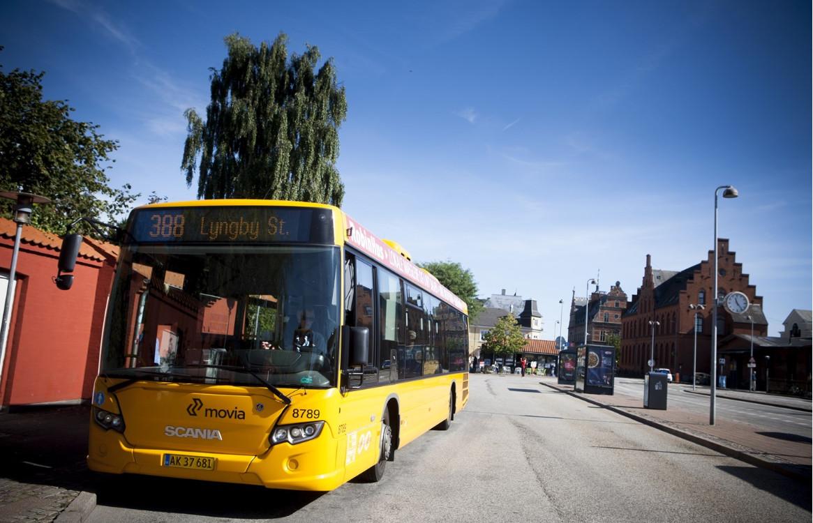 Umove Busse in Dänemark (Foto: Umove)