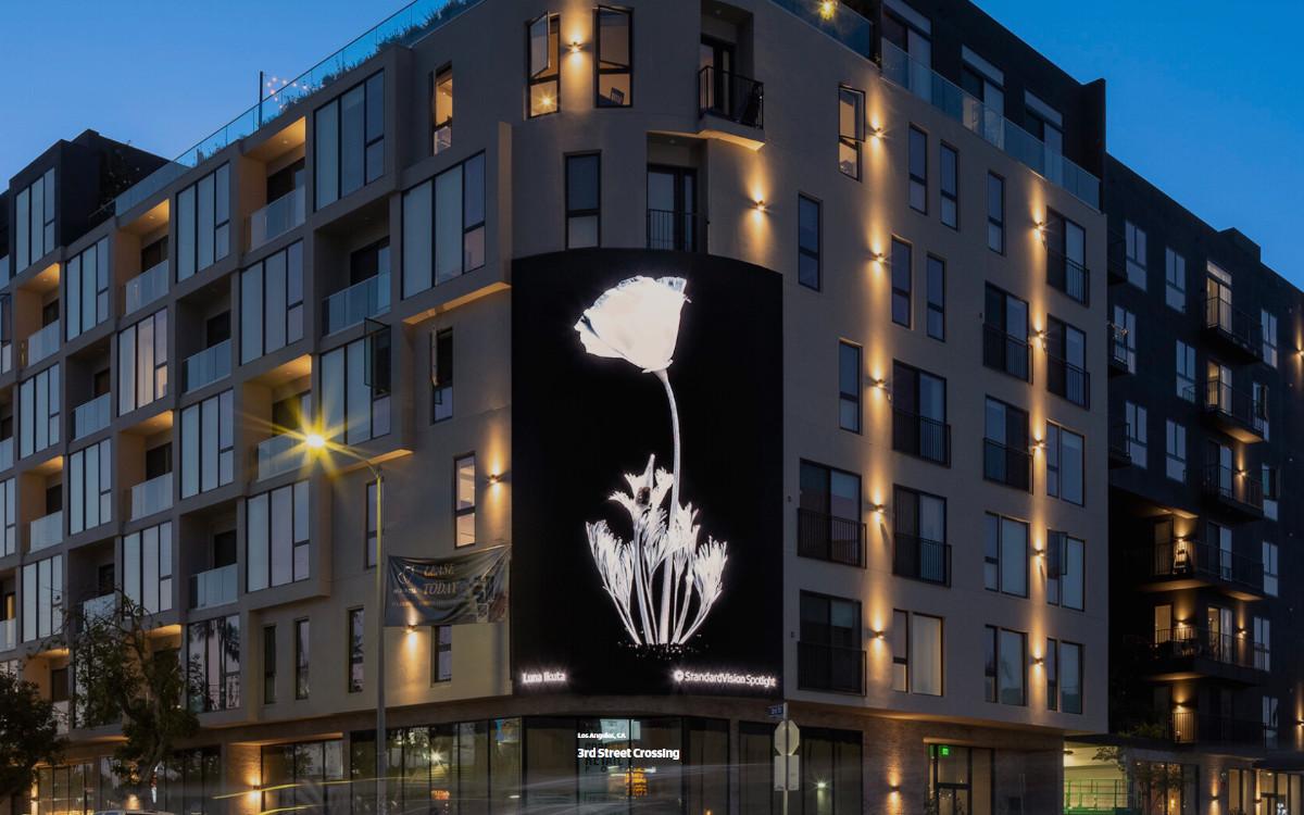 StandardVision lanciert seine neue LED-Installation in Los Angeles mit transparenten Pflanzenlandschaften der Künstlerin Luna Ikuta (Foto: StandardVision/Luna Ikuta)