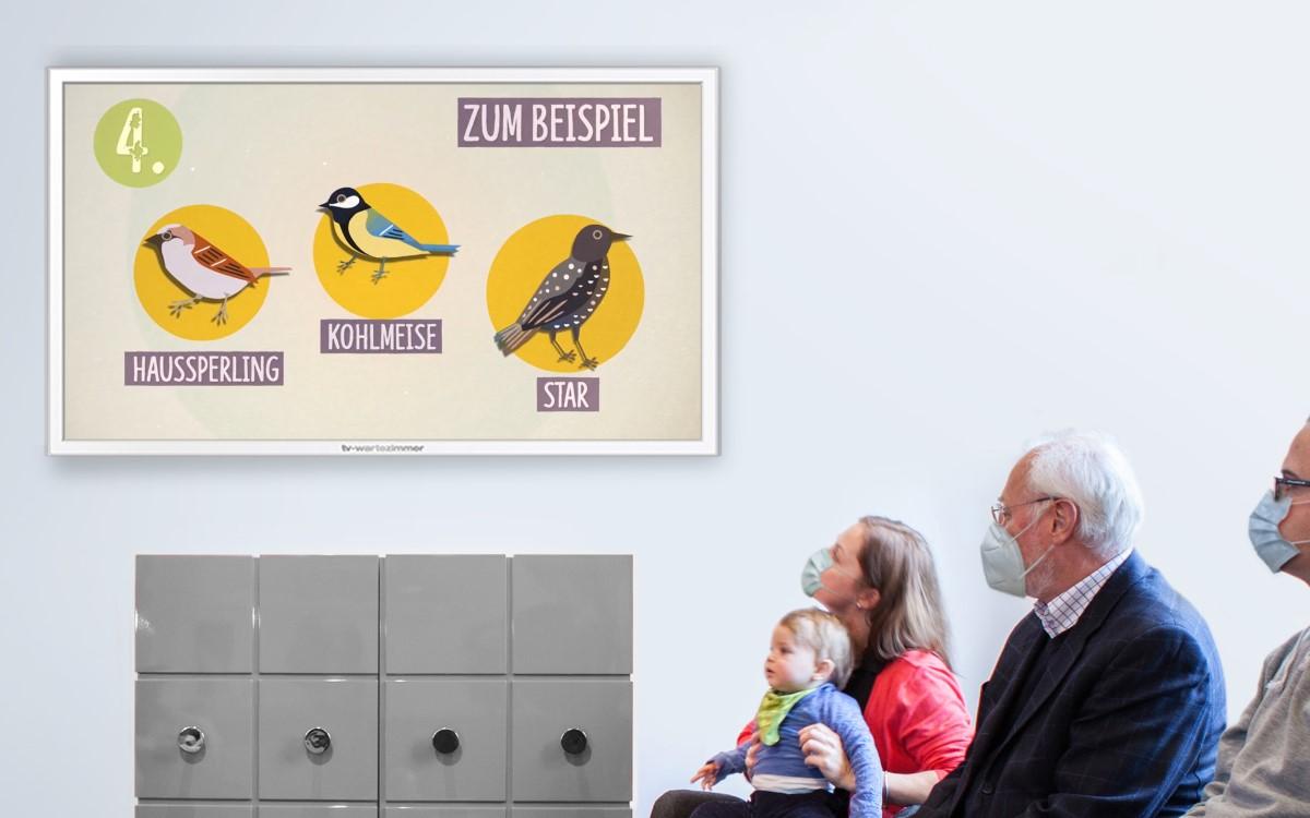 TV-Wartezimmer unterstützt pro Bono die 'Stunde der Gartenvögel', eine jährliche Aktion des Deutschen Naturschutzbundes zur Vogelzählung (Foto: TV-Wartezimmer)