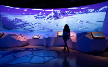 """Die Ausstellung """"Arctic Adventure"""" bietet eine 360-Grad-Immersion. (Foto: Moment Factory)"""